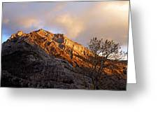 Gold In Them Thar Hills Greeting Card