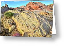 Gold Lava Flow In Valley Of Fire Greeting Card