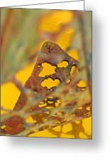 Gold Leaf 3 Greeting Card