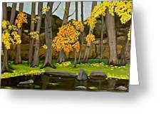 Gold On The River Meadow Park Lyons Co Greeting Card