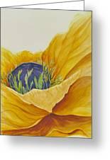 Gold Poppy Greeting Card