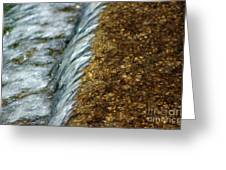 Gold Rush Abstract Greeting Card