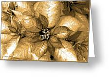 Gold Shimmer Greeting Card
