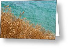 Gold Thistles And The Aegean Sea Greeting Card