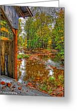 Golden Autumn Days Greeting Card