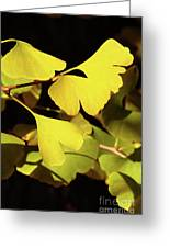 Golden Autumn In Tokyo Greeting Card