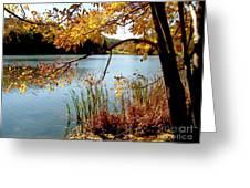 Golden Autumn Lake Greeting Card