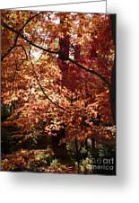 Golden Autumn Sunshine Greeting Card