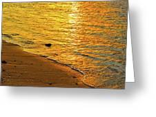 Golden Beach Sunset Greeting Card