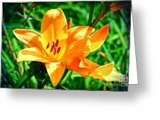 Golden Blossom Greeting Card