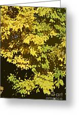 Golden Branches Greeting Card