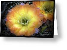 Golden Cactus Bloom Greeting Card