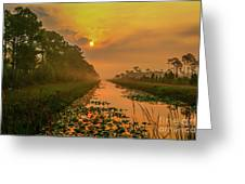 Golden Canal Morning Greeting Card