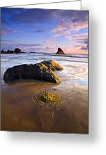 Golden Coast Greeting Card