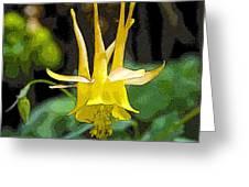 Golden Columbine Greeting Card