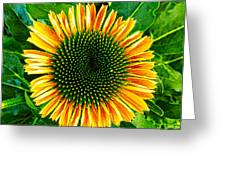 Golden Cone Flower Greeting Card