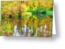 Golden Creek Greeting Card