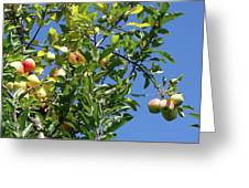 Golden Delicious Danglers Greeting Card