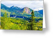 Golden Denali Greeting Card