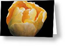 Golden Double Tulip Greeting Card