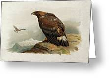 Golden Eagle By Thorburn Greeting Card
