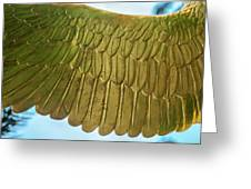 Golden Eagle Wing Greeting Card