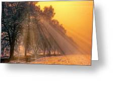 Golden Early Morning Sun Rays On The Farm Chesterhurst L B Greeting Card
