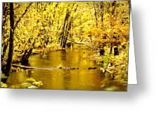 Golden Fall  Greeting Card