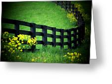 Golden Fence Greeting Card