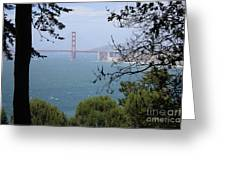 Golden Gate Bridge Through The Trees Greeting Card