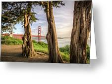 The Trees Of The Golden Gate Greeting Card