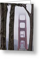 Golden Gate Through The Trees Greeting Card