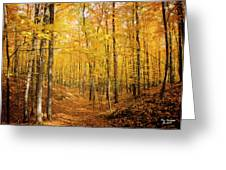 Golden Glory Greeting Card
