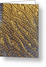 Golden Grains - Hoarfrost On A Solar Panel Greeting Card