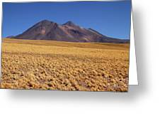 Golden Grasslands And Miniques Volcano Chile Greeting Card