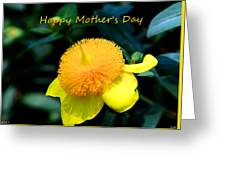 Golden Guinea Happy Mothers Day Greeting Card