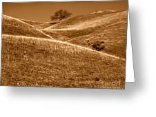 Golden Hills Of California Photograph Greeting Card