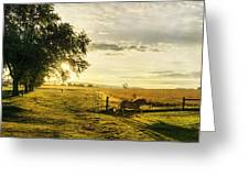 Golden Horse Trot Greeting Card