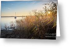 Golden Hour At The Lake Greeting Card