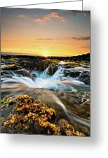 Golden Hour Greeting Card