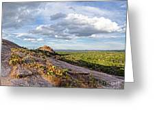 Golden Hour Light On Turkey Peak And Prickly Pear Cacti - Enchanted Rock Fredericksburg Hill Country Greeting Card