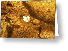 Golden Leaf In Water Greeting Card