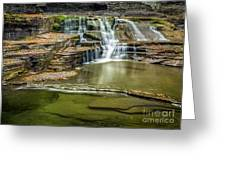 Golden Leaves And Mossy Tiers Of Enfield Glen Waterfall Greeting Card