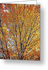 Golden Leaves - Oil Paint Greeting Card