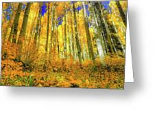 Golden Light Of The Aspens - Colorful Colorado - Aspen Trees Greeting Card