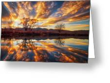 Golden Light On The Pond Greeting Card