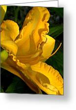 Golden Lily Watercolor Greeting Card