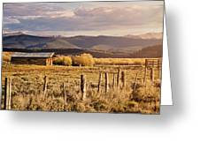Golden Lonesome Greeting Card