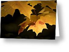 Golden Maple Greeting Card