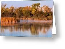 Golden Morning Shoreline Pano Greeting Card